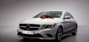 Mercedes-Benz cat commercial